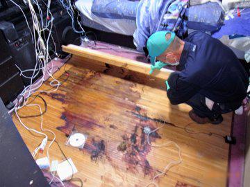 特殊清掃 事例 寝室